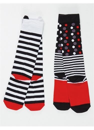 Mushi Çizgili Kediler Kız Dizaltı Çorap 2'li Renkli